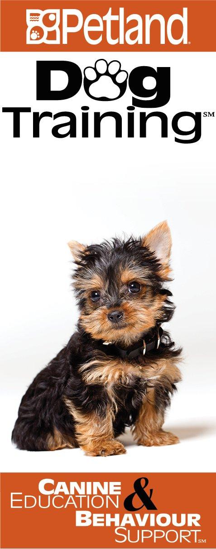 Dog Training in Ohio